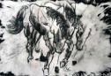 Bucking Horse, Deconstructed